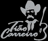 logotipo-tiao-carreiro-base-cinza